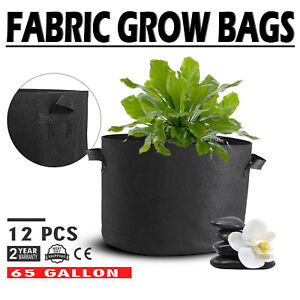 12-Pack-65-Gallon-Fabric-Plant-Grow-Bags-With-Handles-Flood-Trays-Durable-Pots