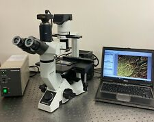 Olympus Ckx41 Fluorescence Phase Contrast Inverted Microscope W 10mp Camera
