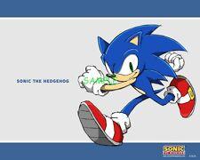 Sonic Sega Games Edible Birthday Cake Topper Frosting Icing 1/4 Sheet
