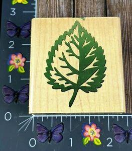 Rubber Stampede Aspen Tree Leaf Rubber Stamp Wood Mount #D40