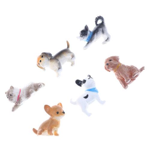 6Pc//Set simulation cat and dog Dollhouse Miniature Model Decoration Gift Toy P0C