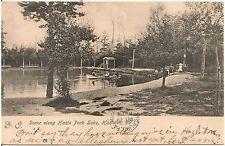 Scene Along Hazle Park Lake in Hazleton PA Postcard 1906