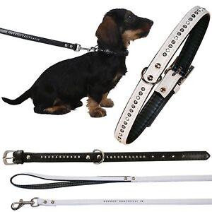 Strass-Diamant-Halsband-Leine-DIAMOND-Hundehalsband-Hundeleine-Fuehrleine-Hund