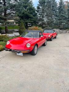 1975 Alfa Romeo Spider