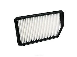Air Filter Suits A1793 HYUNDAI I30 GD KIA CERATO YD 2012 - on WA5299
