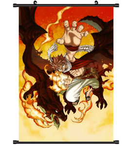 3675 Anime Fairy Tail Natsu Wall Poster Scroll cosplay  A