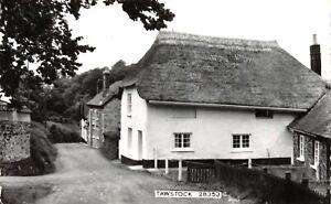 Vintage-Real-Photo-Postcard-Thatched-Cottage-Tawstock-Devon-16X