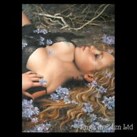 *ARANTZA SESTAYO* Goth Fantasy Art Poster No.5 [91.5x61cm] *FLORA*