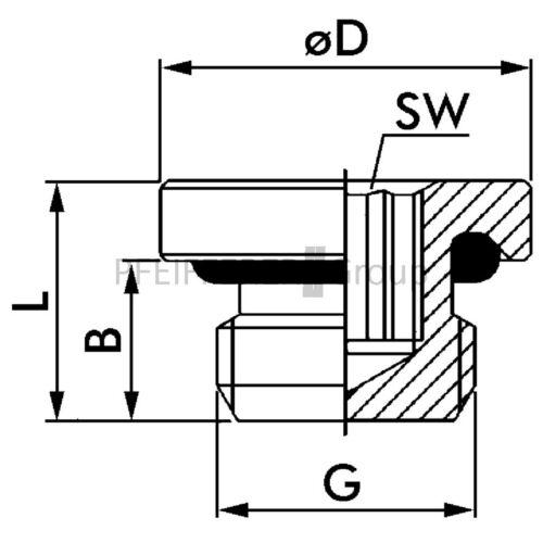 Fitting Brass Lock Bolt f-vis-m5-msv Lock Bolt