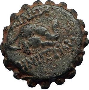 DEMETRIOS-I-Soter-RARE-R3-Ancient-Seleukid-Greek-Coin-HORSE-ELEPHANT-i67456