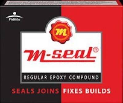Pidilite M Seal Regular Epoxy Compound For Seals Water Leakage 100 Gram Pack Ebay