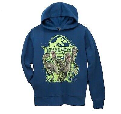 Jurassic World Boys Dinosaur Hoodie Jumper Sweater T Rex Dino Kids Park Hoody