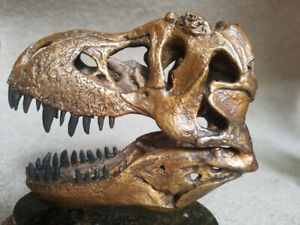 JTS-T-Rex-Bronze-Replica-Skull-NEW-Tyrannosaurus-Rex-MUSEUM-QUALITY-Solid-Bronze