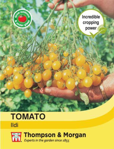 25 Seed Thompson /& Morgan Vegetables Tomato Ildi