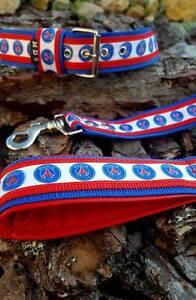 collier pour chien paris