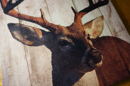 LARGE BUCK DEER PHOTO CANVAS PRINT SIGN Rustic Cabin Lodge Wall Home Decor NEW