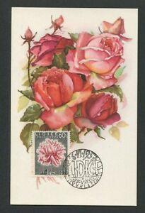 Audacieux Cssr Mk 1957 Flore Roses Rose Roses Maximum Carte Carte Maximum Card Mc Cm D7947-afficher Le Titre D'origine Qualité Et Quantité AssuréE