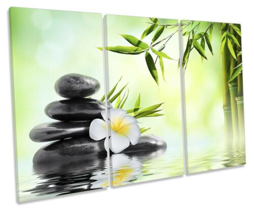 ZEN STONES Floral salle de bain Photo TREBLE TOILE murale ART imprimé vert