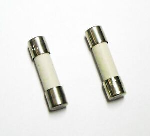 CERAMIC FUSE DELAYED OF TYPE T 10A 250V 5x20mm (2 Pezzi)