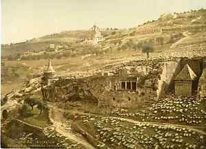 Jerusalem-vallee-des-Tombeaux-de-Josaphat-Photochrome-original-d-039-epoque-V