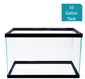 10-Gallon-Fish-Tank-Aquarium-Clear-Glass-Terrarium-Pet-Aqua-Home-Reptiles-Fishes
