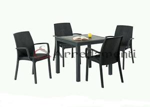 Tavolo sedie con braccioli da esterno giardino poli