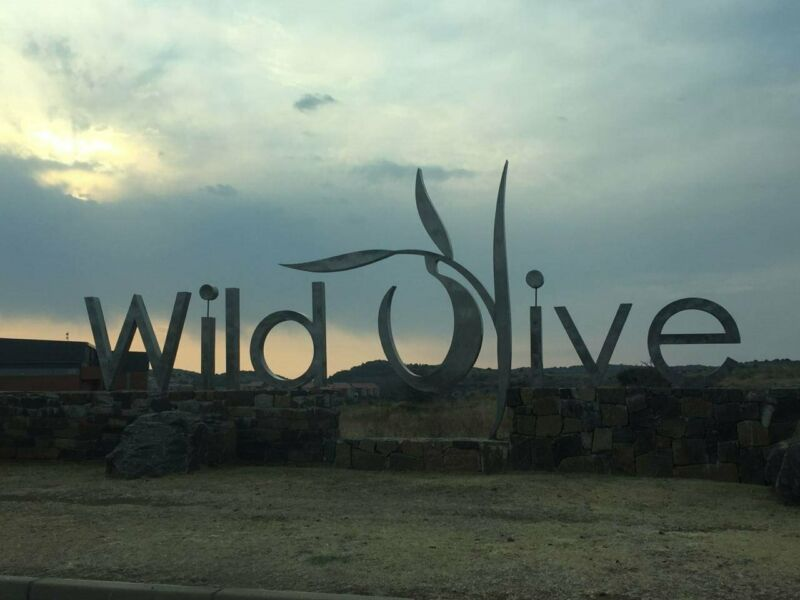 Stunning open erf located in Wild Olive