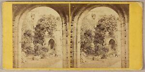 Abbaye Da Dryburgh Scozia UK Foto Wilson Stereo PL55L2n Vintage Albumina