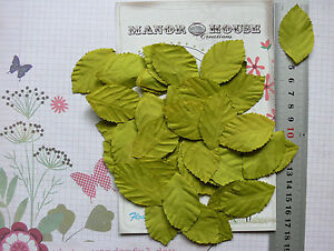 LEAVES-Light-GREEN-LARGE-x-40-Pack-Paper-48mm-long-x-28mm-wide-Manor-House