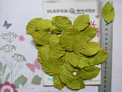 LEAVES Light GREEN LARGE x 40 Pack Paper 48mm long x 28mm wide Manor House