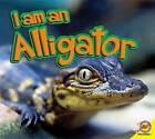 Alligator by Karen Durrie (Hardback, 2012)