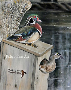Wood-Duck-5-034-x-7-034-Art-Print-034-Frank-039-s-Pair-034-Duck-Box-By-Realism-Artist-Roby-Baer