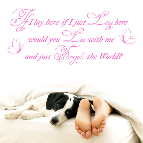 """Vinyl Wall LARGE /""""IF I LAY HERE-SNOW PATROL-CHASING CARS/""""ART QUOTE STICKER 2"""