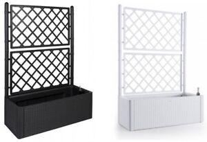 gartenspalier spalier rankgitter rankhilfe pflanzkasten blumenk bel rattan top ebay. Black Bedroom Furniture Sets. Home Design Ideas