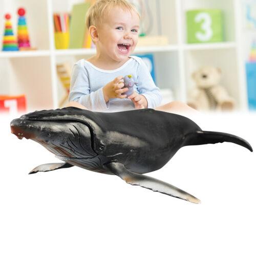 Marine Humpback Whale Ocean Animal Figure Model Kids Children Toy Gifts