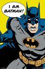 BATMAN ART POSTER ~ I AM BATMAN 22x34 DC Comic Book