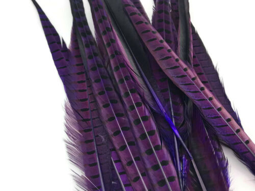 "20-22/"" Purple Dye Over Natural Long Ringneck Pheasant Tail Feathers 10 Pieces"
