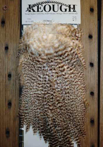 Keough Saltwater Saddle Grade #1 Top Federn Top Farben Top Preis DEAL 22,90 Euro