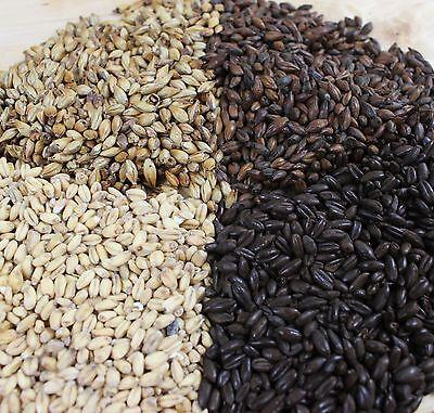 Brupaks 500g Brewing Grain - Malt Crushed/Whole - Wide range for Home Brew