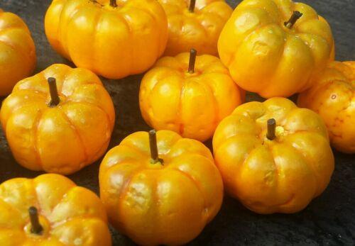 20 Artificial Pumpkin Fruits 3.5cm.x 2cm for craft autumn..etc. UK  SELLER