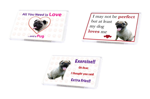Cute Funny Dog Pug Fridge Magnet Various Designs Pet Animal Lover Ideal Present