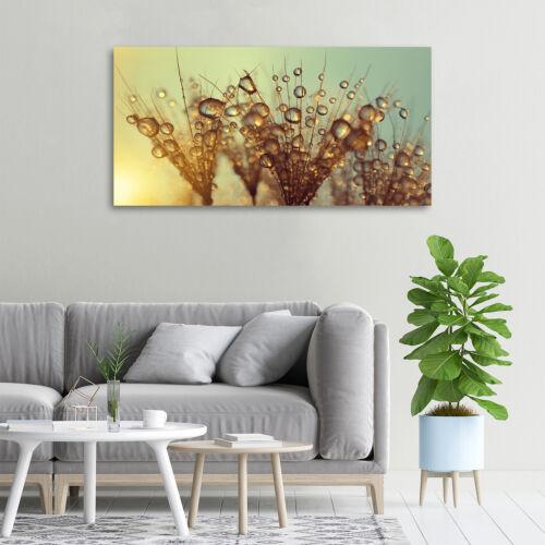 Glas-Bild Wandbilder Druck auf Glas 100x50 Deko Blumen /& Pflanzen Pusteblume