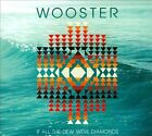 All the Dew Were Diamonds [Digipak] * by Wooster (CD)