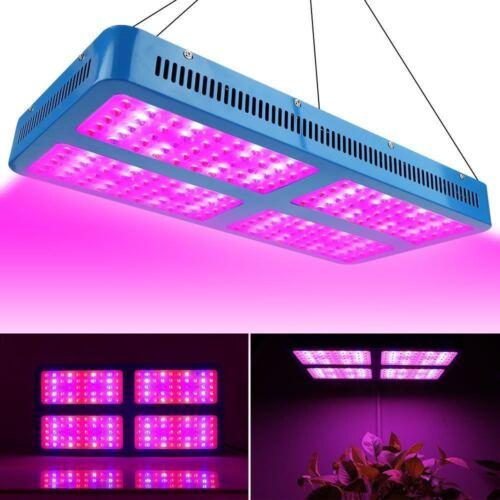 100W 1000W 2000W 3000W LED Grow Light Full Spectrum Lamp for Hydroponics  Plant