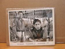 The 7th Dawn 8x10 photo movie stills print #441