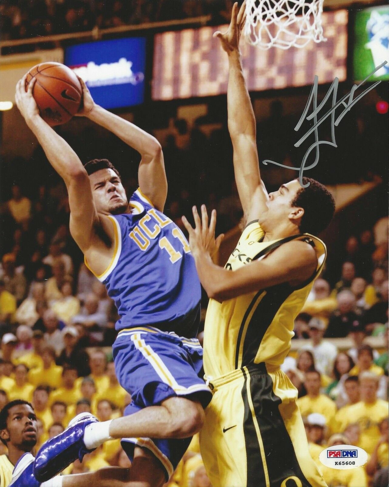 Jordan Farmar UCLA Bruins signed 8X10 Photo PSA/DNA # K65608