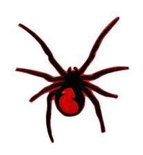 Black Widow Spider Patch Iron on Applique Alternative Clothing Gothic Deathrock