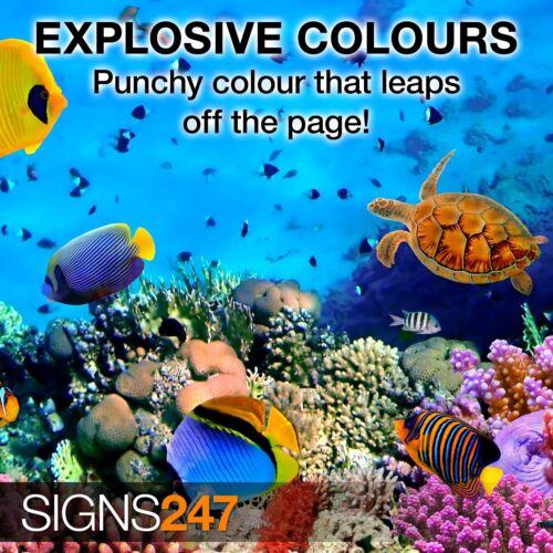 A4 Full Colour MATT Poster Printing Service A3 A2 A1 A0 available