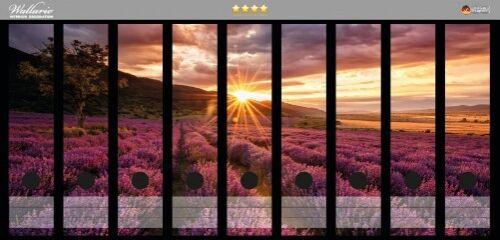 Wallario Ordnerrücken selbstklebend für 9 breite Ordner Lavendelfeld am Abend