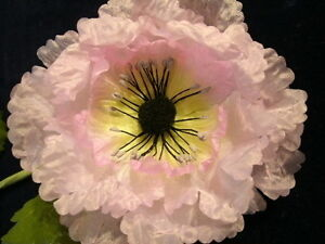 Vintage-Millinery-Flower-4-1-2-034-Frilly-Pale-Pink-Poppy-KC2